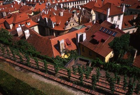 Rooftops in Prague